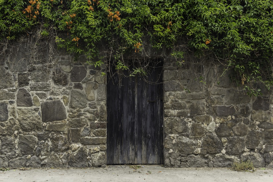 Kirsikka- ja leppäpuiset ovet